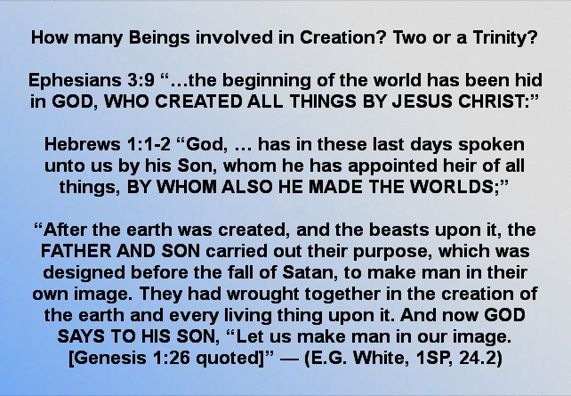 How many beings in creation